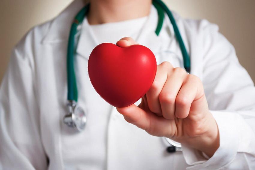 Das Herz muss gut funktionieren